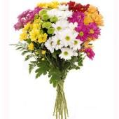 ramo-de-flores-rainbow-margaritas