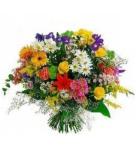 varias flores